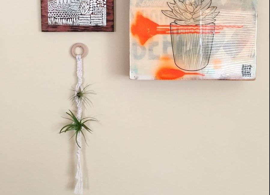 Stacy-Wong-Macrame-Air-Plant-Hanger-Wall
