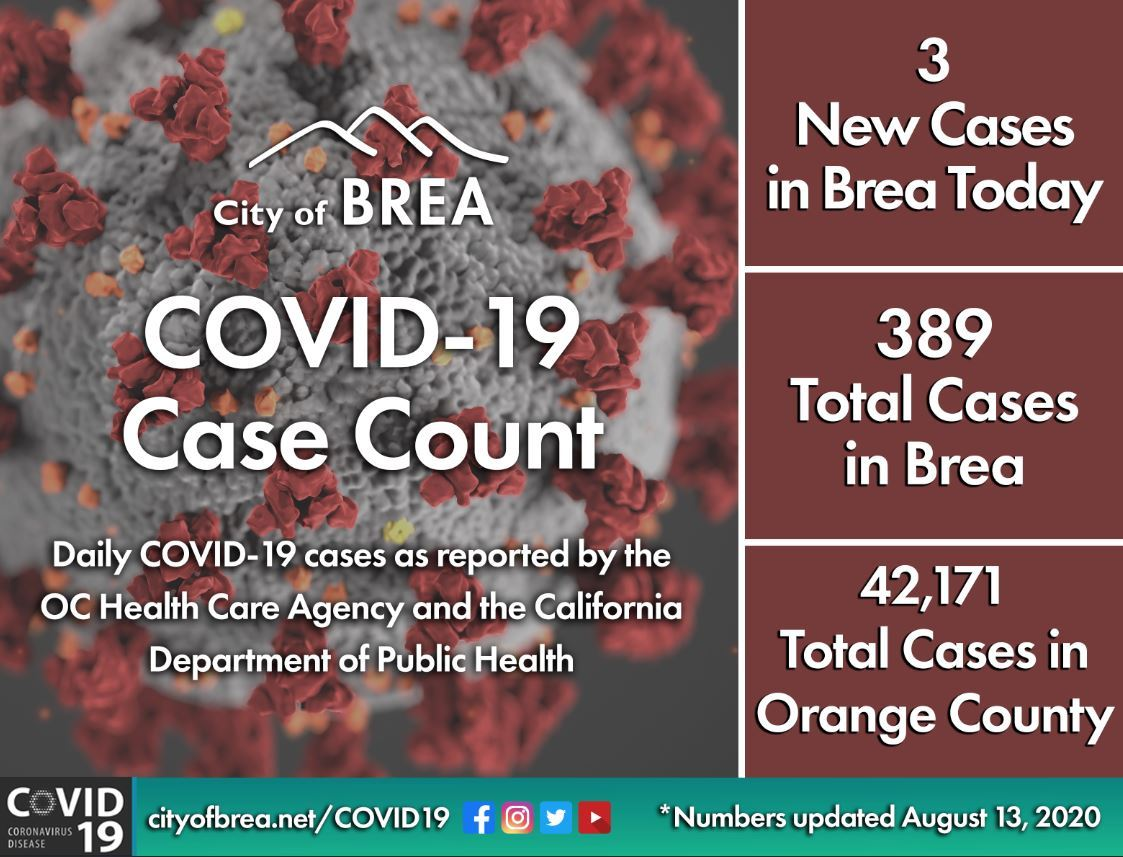 August 13 Case Count